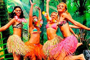 Celebración hawaiana al aire libre - Fiesta luau hawaiana ¡en tu jardín!