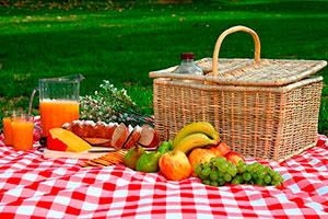 Consejos para un pícnic - 5 tips para un día de campo genial