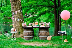 Fiesta al aire libre - Celebra un dulce y primoroso pícnic